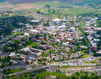2699 Washington State University